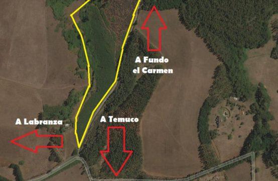 Se Venden 4 Hectareas Loteadas en 8 Parcelas Sector Trañi Trañi-Botrolhue Temuco