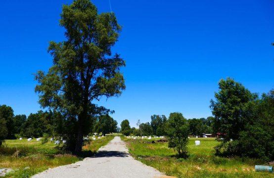 Se vende parcela en zona lacustre IX región